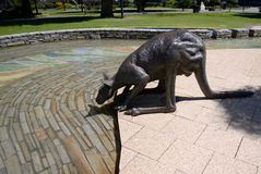 Statue of a kangaroo in Perth park Australia Stock Images