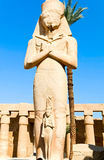 Statue in Karnak temple royalty free stock photography