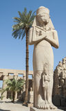 Statue in Karnak temple Luxor Royalty Free Stock Photos