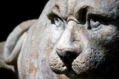 Statue of lion Stock Photos