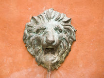 Statue of a lion Royalty Free Stock Photos
