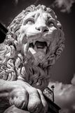 Statue of a lion, black in white. Classical marble lion sculpture close-up. Face of a ferocious lion with open mouth stock photos
