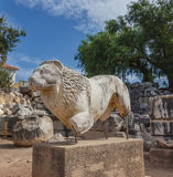Statue lion in Didim Royalty Free Stock Image