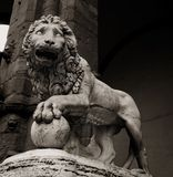 Statue of lion in Florence Royalty Free Stock Image