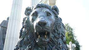 Statue of a Lion`s Head. Closeup stock footage