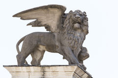 Statue of the lion of St. Mark. On White Background Stock Photos