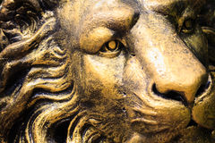 Statue lion stone face Stock Images
