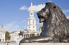 Statue of a lion in Trafalgar Square in London. Statue of a lion in the Nelson column in Trafalgar Square in London Royalty Free Stock Photo