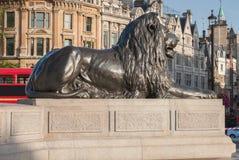 Statue of Lion on Trafalgar Square in London, United Kingdom. Statue of Lion on Trafalgar Square in London, United Kingdom Royalty Free Stock Photo