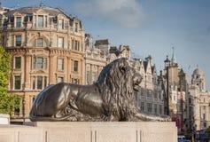 Statue of Lion on Trafalgar Square in London, United Kingdom. Statue of Lion on Trafalgar Square in London, United Kingdom Stock Image