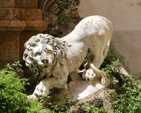 Statue of a lion, white marble Royalty Free Stock Images