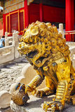 Statue of Lions  inside the territory of the Forbidden City Muse Royalty Free Stock Photo