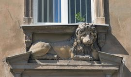 Statue of a lying lion under the house window. Lviv Royalty Free Stock Image