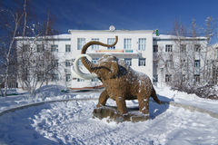 Statue of Mammoth in Yakutsk Stock Image