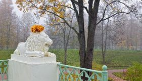 Statue of marble lion in Catherine park. royalty free stock image