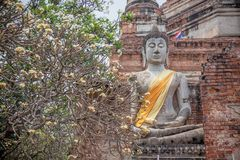 Statue of meditating Buddha at the ruins of ancient city Ayutthaya,former ancient capital of royalty free stock photography