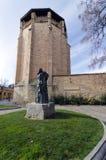 Statue of Miguel de Unamuno Royalty Free Stock Photos
