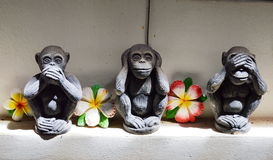 Statue monkey closed mouth ear and eye symbol in religion Royalty Free Stock Photography