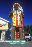 Statue of Native American in costume at the Big Indian Shop, Mohawk Trail, MA Stock Photo