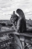Statue on Notre-Dame in Paris Stock Photography