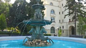 Statue with nude girls,horses and water in Brasov,Romania Stock Photos