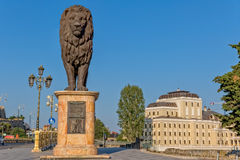 Statue occidentale de lion de Skopje Photo libre de droits