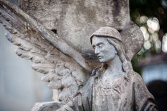 Free Statue Of Angel Stock Photo - 54721300