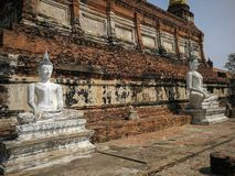 The statue old Buddha and ancient pagoda at Wat Yai Chaimongkol,Ayutthaya,Thailand royalty free stock images