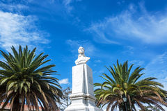 Statue and Palm Trees Royalty Free Stock Photography