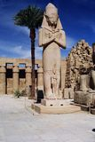 Statue of Pharaoh Ramses II. In the courtyard in Karnak Stock Photography