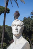 Statue and a Pigeon Royalty Free Stock Image