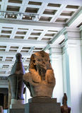 Statue posée d'Amenhotep III, British Museum Photo libre de droits