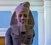 Statue posée d'Amenhotep III, British Museum Photos libres de droits