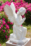 Statue of a praying angel on a background of blurred flowers. Stock Image