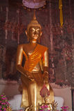 Statue of a pure gold Buddha Royalty Free Stock Photo