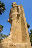 Statue of Rameses II in Mit Rahina Museum Royalty Free Stock Photo