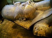 Statue of Ramesses II in Memphys, Egypt. Statue of Ramesses II in museum of Memphys Stock Image