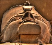 Statue of Ramses II. Head detail of the Colossus of Ramses II at the Museum of Memphis, Egypt stock photos