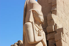 The Statue of Ramses II Stock Images