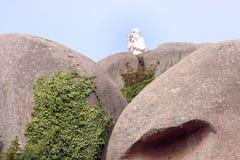 Statue on rock Stock Photo