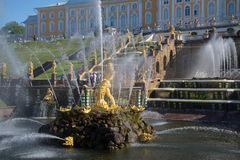 Statue of Samson in the bowl of the Grand cascade, sunny summer day. Peterhof Stock Photography
