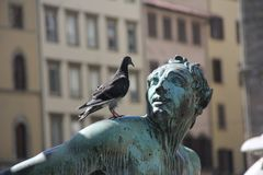Statue, Sculpture, Monument, Pigeons And Doves Royalty Free Stock Photography