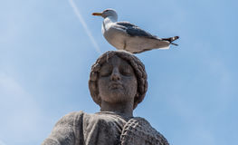 Statue and a Seagull. A picture of a seagull sitting on the top of the statue in Monaco Stock Photos
