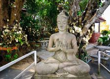 Statue of a seated Buddha in the Park of the temple complex Big Buddha. stock photos
