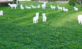 Statue sheep with lambs a pasture Stock Photography