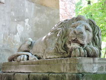 Statue of sleeping leo Royalty Free Stock Images