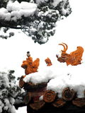 The statue in snow. The eave and statues of the forbidden city after snow stock photos