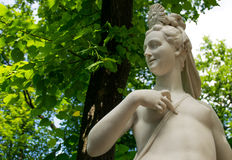 Statue in the Summer Garden Royalty Free Stock Images