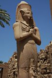 Statue of the Temple of Karnak Royalty Free Stock Photo