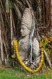 Statue in tree vines. Old statue being wrapped by overgrown tree vines Royalty Free Stock Photos